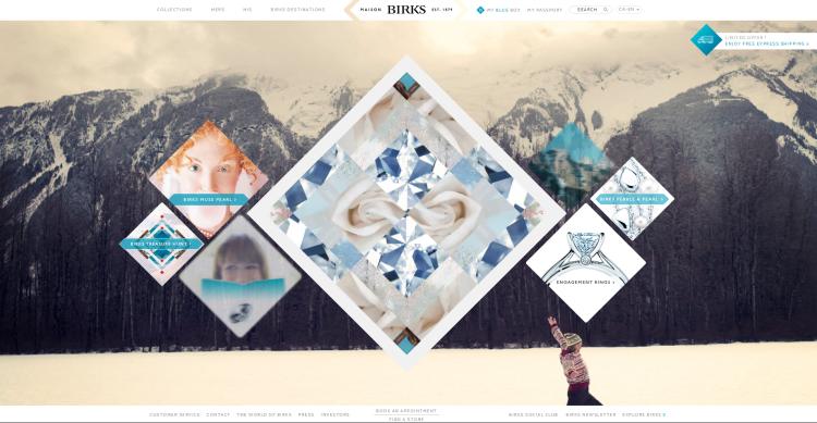 BGI - Website Mini
